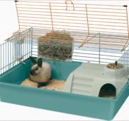 Купить набор для кролика